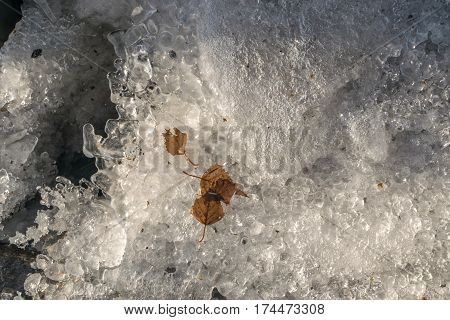 Grey Melted Ice On The Ground In Early Spring