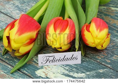 Felicidades (which means Congratulations in Spanish) with colorful tulips on rustic wooden surface
