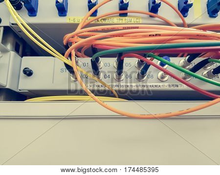 Closeup of fiber optic cable plugged into switch. Internet of things and communication concept.