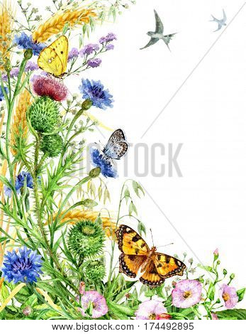 Hand drawn watercolor illustration. Floral elements. A side decoration with wildflowers butterflies and flying birds. Space for text.