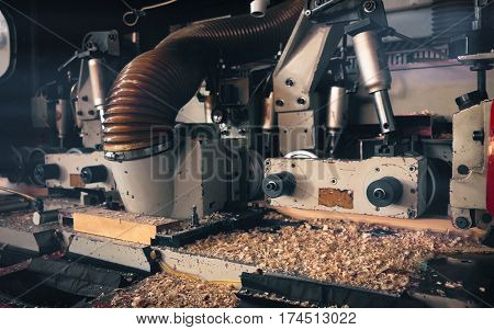 Detail of a machine for processing wood in a sawmill.
