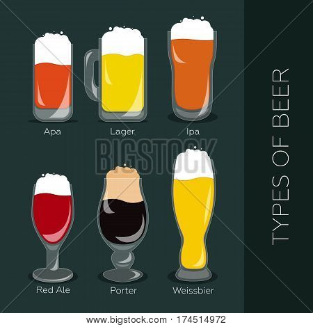 Poster with main types of beer - porter, lager, apa, ipa