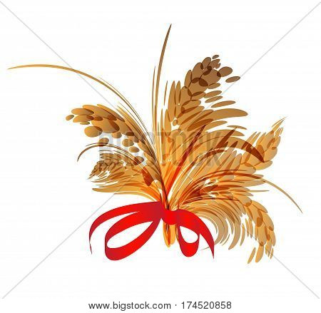 Bunch of spikelets isolated on white background