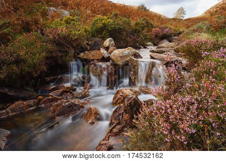 A small mountain stream in Cwm Bychan near Beddgelert in the Snowdonia National Park in North Wales. Shot with a long exposure to accentuate the flow of the water