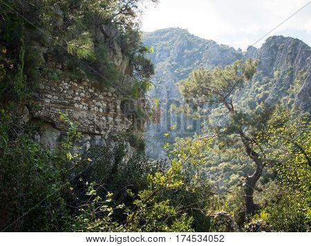 Olympos ruins archeological site in Cirali Turkey