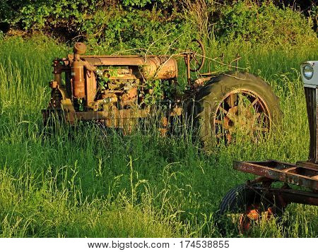 Old Rusted Tractor over grown in weeds