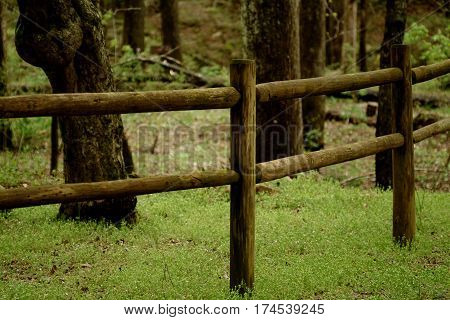 Old Wooden Fence Running Through Forrest in Arkansas