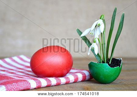 Happy Easter card: Easter egg and spring flowers in eggshell on wooden table
