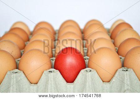 Red Easter egg among brown eggs in egg box