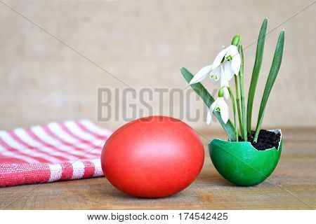 Easter egg and spring flowers in eggshell on wooden table