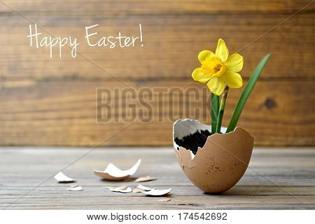 Easter card: Spring flowers in eggshell on wooden table