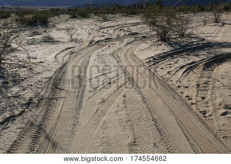 Many tire tracks in desert sand, offroad in the Anza Borrego Desert in California.