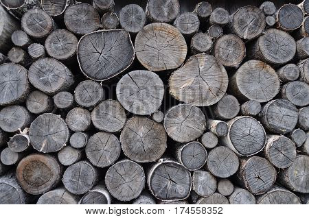 Stack of old gray birch chocks on the ground