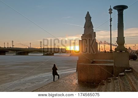 Saint-Petersburg. Russia. Evening view of the city with Egyptian ancient sphinx on The Universitetskaya Embankment of The Neva River. On the background is The Blagoveshchensky (Annunciation) Bridge
