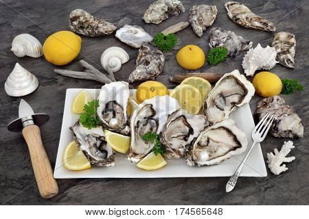 Oysters on ice with knife and old silver fork, lemon fruit, parsley and sea shells on a porcelain plate on marble.