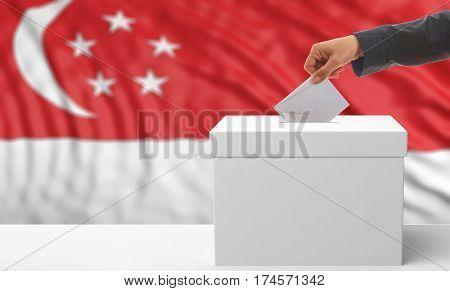 Voter On A Singapore Flag Background. 3D Illustration