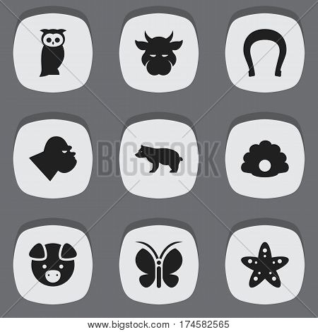 Set Of 9 Editable Nature Icons. Includes Symbols Such As Kine, Moth, Hog And More. Can Be Used For Web, Mobile, UI And Infographic Design.