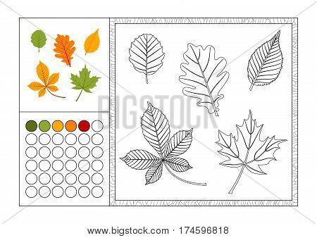 adult coloring book page with colored template decorative frame and color swatch - vector black and white contour picture - autumn leaves