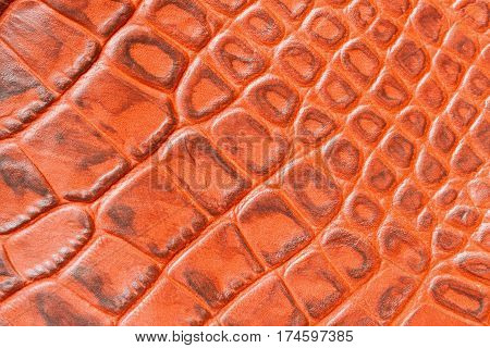 Texture of genuine leather close-up, embossed under the skin a orange brown crocodile. For modern pattern, wallpaper or banner design. With place for your text