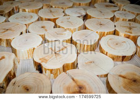 Many alder saw cuts of different diameters and thicknesses lie on table. Selective focus. Perspective view.