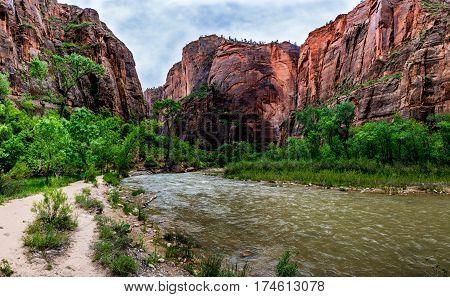 Panoramic Landscape Of Zion National Park, Utah.