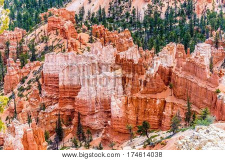 Colorful Hoodoo Rock Formations In Bryce Canyon National Park, Utah.