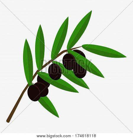 Olive Branch Icon