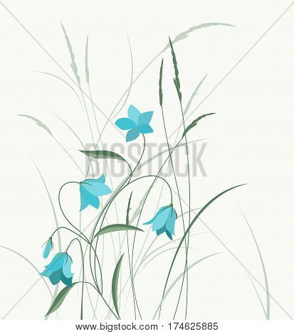 Vector illustration blue bell-shaped flowers in the grass. Summer flowers Campanula