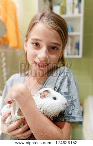 Small teenage girl with her pet guinea pig after bathing