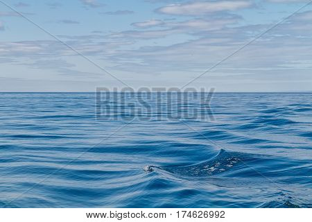 Abstract Ripples in Ocean of the Artic Circle Iceland