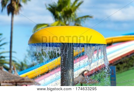 Decorative Mushroom With Shower In The Water Park.