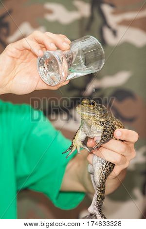 Magician holds frog in his hand and drops water on its head
