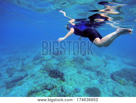 Woman swimming with sea turtle. Tropical sea background. Woman swims undersea in swimming costume and full-face mask. Underwater photo of female snorkel. Snorkeling in coral reef with marine animal.