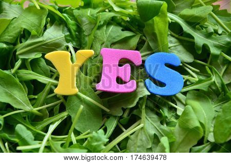 word yes on a  abstract colorful green background
