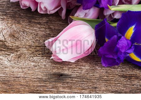 Blue irises and pik tulips on wooden aged background