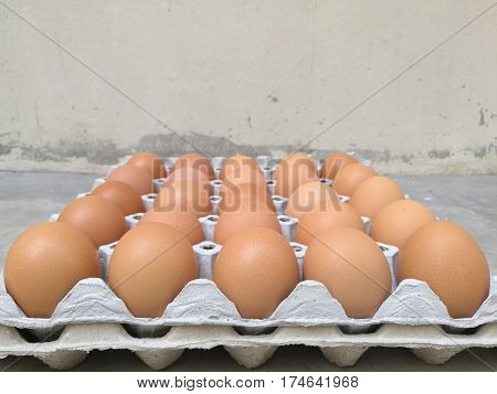 Dozen of chicken egg for cooking breakfast in the egg storage tray with blur background Easter egg for hiding