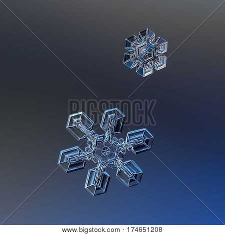 Macro photo of two real snowflakes: small and medium size stellar plates with simple shape and relief surface, glittering on dark blue gradient background.