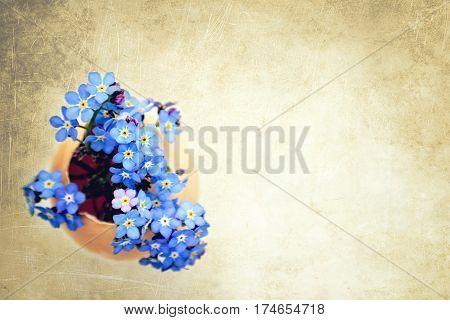 Easter flowers in eggshell on grunge background