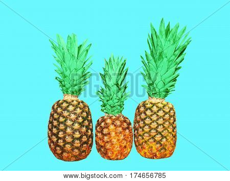 Three Pineapple On Blue Background, Colorful Ananas