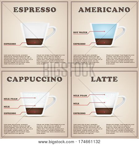 Coffee information background menu with cup cutaway. Infographic of beverages types and preparation. Editable vector illustration.