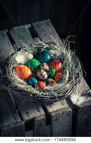 Fresh Easter Eggs In The Rustic Cottage