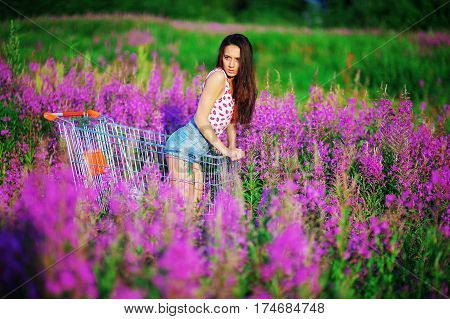 Young pretty long haired brunette girl with tattoo on the leg of a t-shirt and denim shorts posing on his knees in the cart in the middle of a field dotted with purple flowers of fireweed