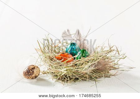 Closeup Of Quail Easter Eggs In Nest On White Table