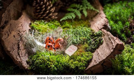 Colourful Easter Eggs On Bark With Moss
