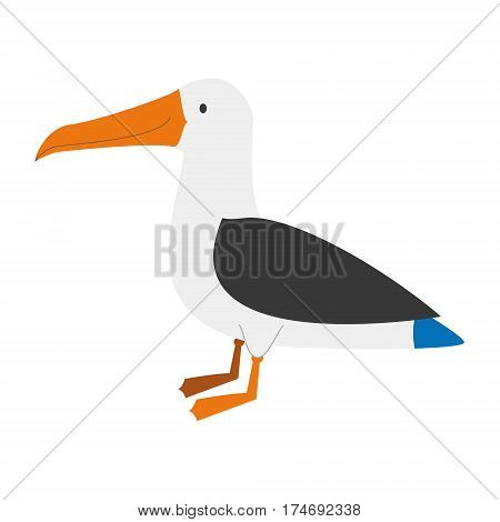 Cute albatross in cartoon style vector illustration