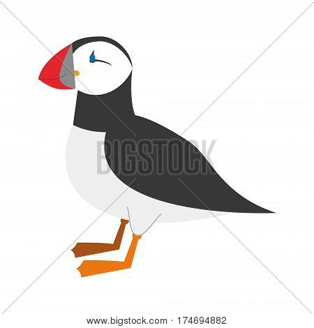 Cute puffin in cartoon style vector illustration