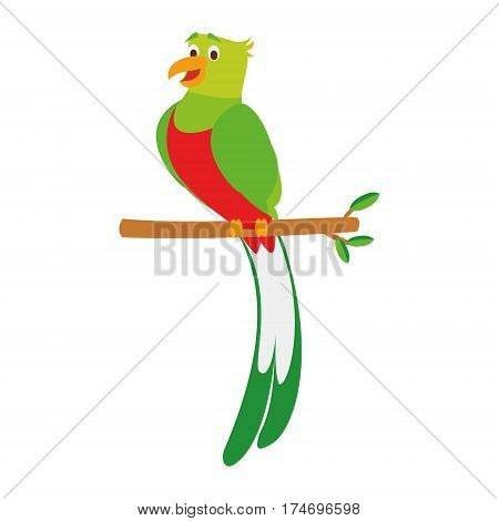 Cute quetzal in cartoon style vector illustration