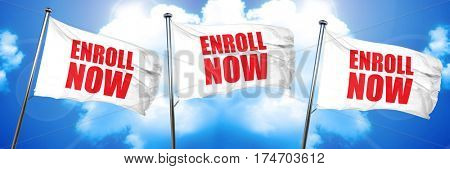 enroll now, 3D rendering, triple flags