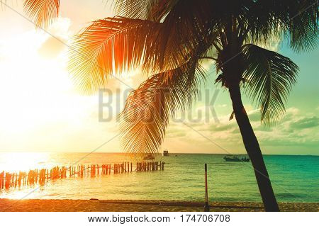 Sunset Beach with palm trees and beautiful sky. Tourism, travel, vacation concept background. Mexico. Paradise scene of Caribbean Island. Sun and Palms