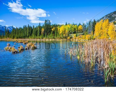 Indian warm summer on the lake Vermillon. Concept of ecotourism. Canadian province of Alberta, the Rocky Mountains, Banff